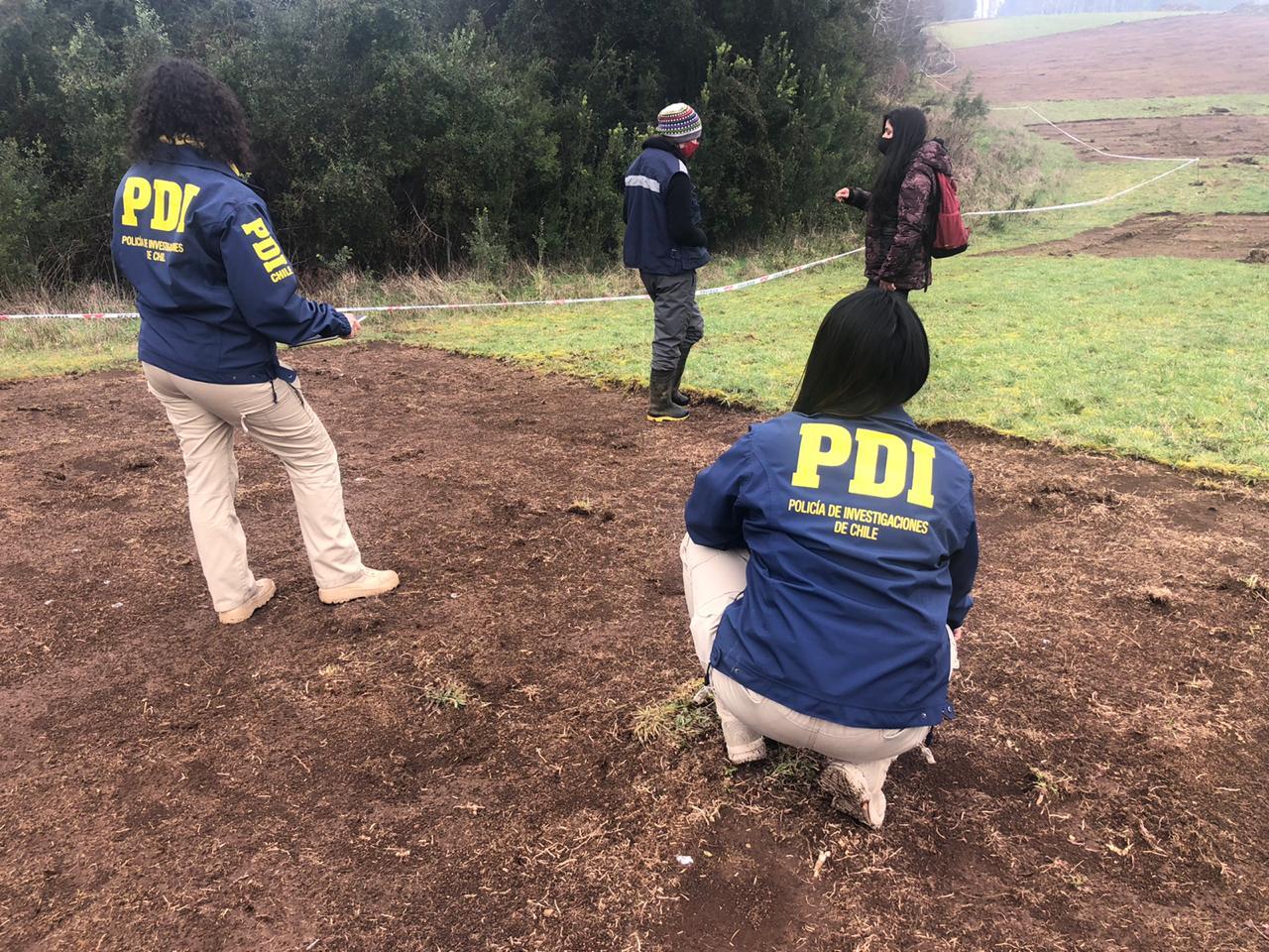 Bidema Valdivia investiga hallazgo de posibles restos arqueológicos camino a Niebla