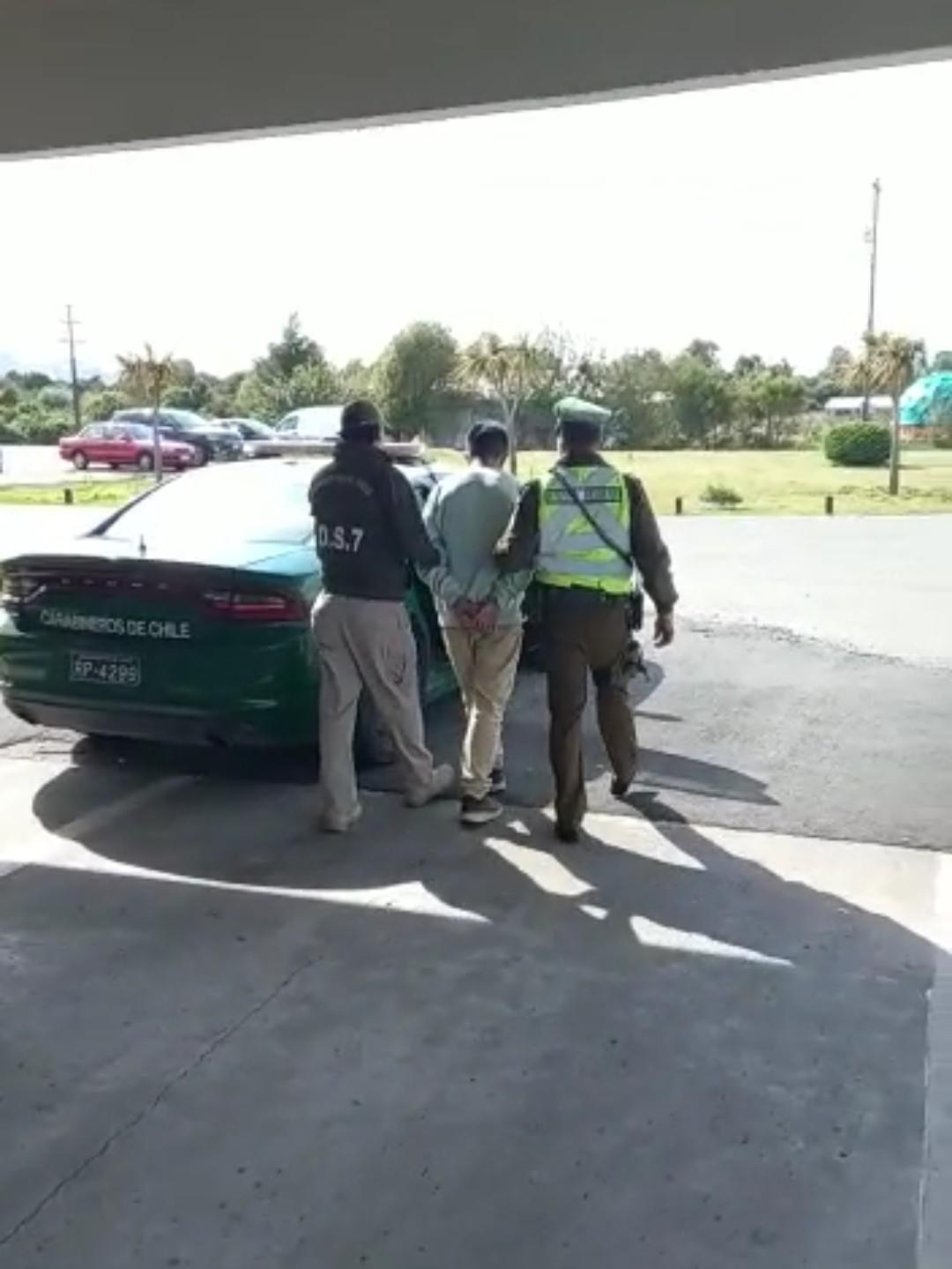 Ruta 5 Sur: Carabineros incautó marihuana en bus interprovincial.